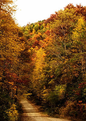 Photograph - Davis Creek Road In Fall by Keela Mimbs