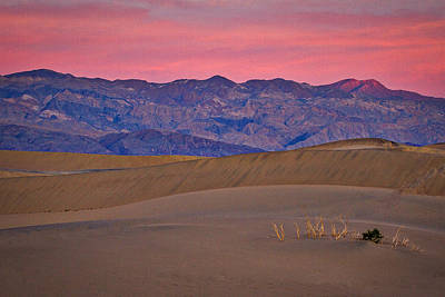 Photograph - Dawn At Mesquite Flat #3 - Death Valley by Stuart Litoff