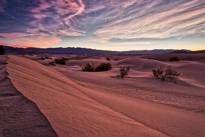 Photograph - Dawn At Mesquite Flats - Death Valley by Stuart Litoff