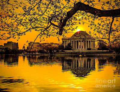 Dawn At The Jefferson Memorial  Art Print by Nick Zelinsky