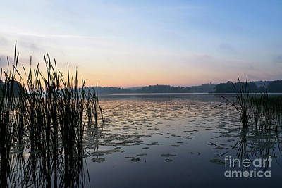Photograph - Dawn At The Lake Enajarvi by Ismo Raisanen
