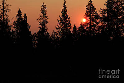 Photograph - Dawn At Yellowstone by Ben Graham