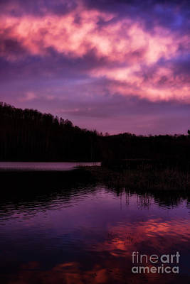 Art Print featuring the photograph Dawn Big Ditch Wildlife Management Area by Thomas R Fletcher