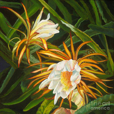Night Blooming Cereus Painting - Dawn Cereus II by Pati O'Neal