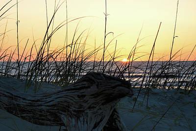 Photograph - Dawn by Ed Waldrop