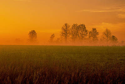 Photograph - Dawn Haze by John Harding
