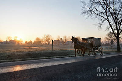 Photograph - Dawn In Amishville by David Arment