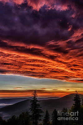 Photograph - Dawn In The Highlands by Thomas R Fletcher