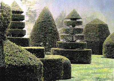Dawn In A Topiary Garden   Art Print by Angela Davies