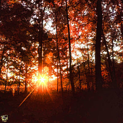 Manip Photograph - Dawn In The Woods by Stephen Kinsey