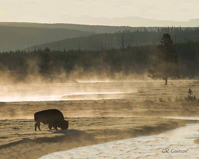 Photograph - Dawn In Yellowstone by CR  Courson