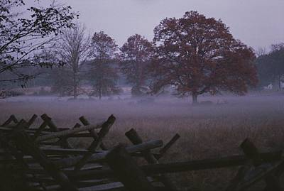 Park Scene Photograph - Dawn Mist Hangs Over A Field Bordered by Stephen St. John