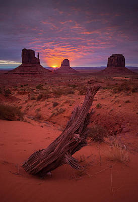 Photograph - Dawn // Monument Valley // Arizona by Nicholas Parker