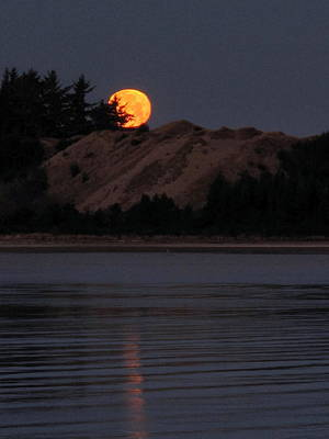 Photograph - Dawn Moon Glow by Suzy Piatt