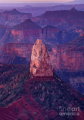 Photograph - Dawn Mount Hayden Point Imperial North Rim Grand Canyon National Park Arizona by Dave Welling