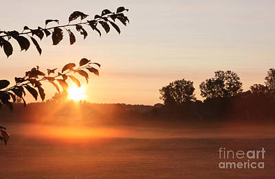 Photograph - Dawn Of A Brand New Day  by Cathy Beharriell