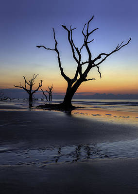 Photograph - Dawn On Bull Island by Harry B Brown