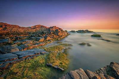 Photograph - Dawn On Marginal Way by Rick Berk
