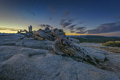 Photograph - Dawn On Sentinel by Rick Berk