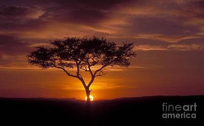 African Landscape Photograph - Dawn On The Masai Mara by Sandra Bronstein