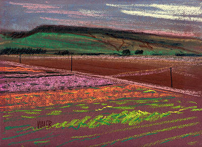 Drawing - Dawn Over Lompoc Flower Fields by Donald Maier