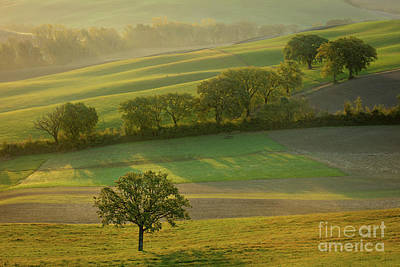 Photograph - Dawn Over Tuscany II by Brian Jannsen