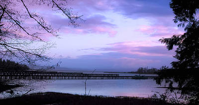Photograph - Dawn Pastel Skies  by Dee Browning