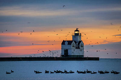 Photograph - Dawn Patrol by Bill Pevlor