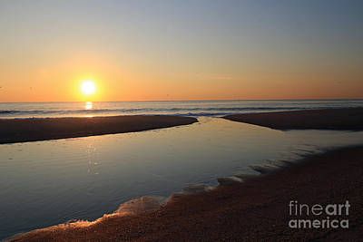 Photograph - Dawn Tidepool by Mary Haber