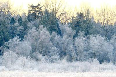 Photograph - Dawn's Dusting by Frank Townsley