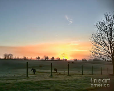Photograph - Dawns Early Light by Kerri Farley