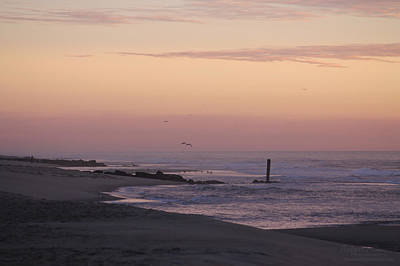 Photograph - Dawns Purple Hues by Robert Banach