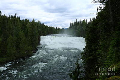 Flowing Wells Photograph - Dawson Falls by Christiane Schulze Art And Photography