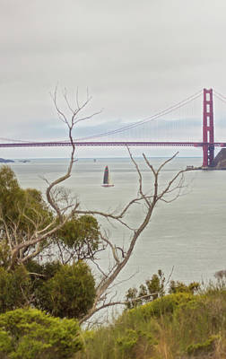 Photograph - Day At The Bay by Wes Jimerson