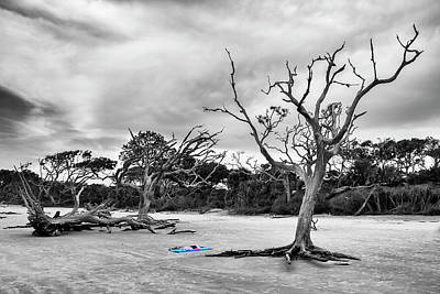Photograph - Day At The Beach by Newman Artography