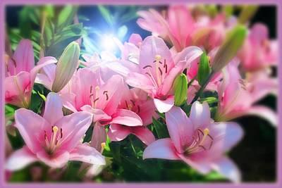 Digital Art - Day Light Lilies by Mindy Newman