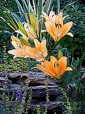 Photograph - Day Lilies On The Rocks by Nancy Kane Chapman
