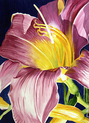 Day Lily In Sunlight Art Print by Janis Grau