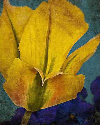 Linda King Painting - Day Lily Textured by Linda King