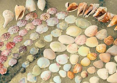 Photograph - Day Of Shelling At Sanibel Island by Janette Boyd