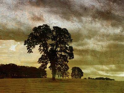 Overcast Mixed Media - Daybreak  by Bonnie Bruno