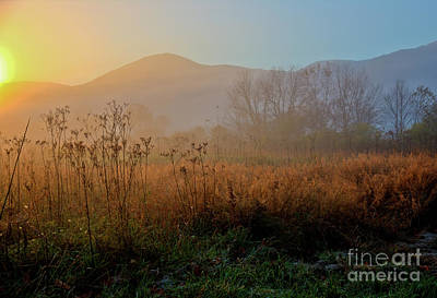 Photograph - Daybreak In Cades Cove by Douglas Stucky