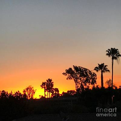Art Print featuring the photograph Daybreak by Kim Nelson