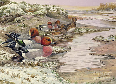 Snowy Stream Painting - Daybreak On The Washes  Wigeon by Carl Donner