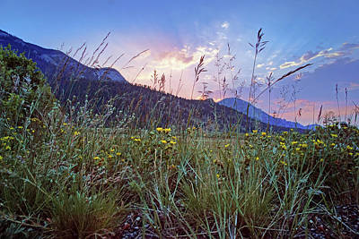 Photograph - Daybreak - Rocky Mountain National Park by Nikolyn McDonald