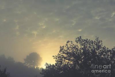 Nature Photograph - Daybreak by Sverre Andreas Fekjan