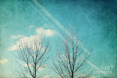 Sky Photograph - Daydreamer by Angela Doelling AD DESIGN Photo and PhotoArt