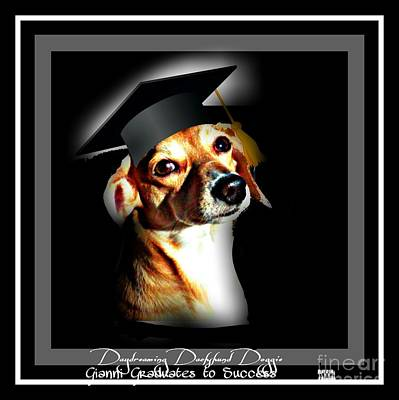 Dachshund Art Photograph - Daydreaming Dachshund Doggie Gianni Graduates  by PrettTea Art Gallery By Teaya Simms