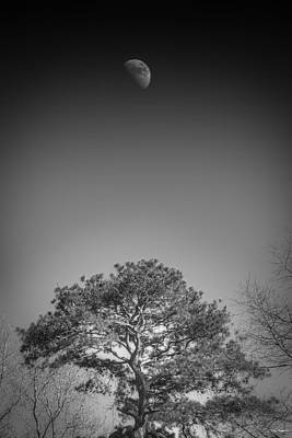 Photograph - Daylight Moon by Phil Rispin