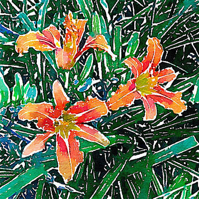 Photograph - Daylilies 1 by Ronda Broatch